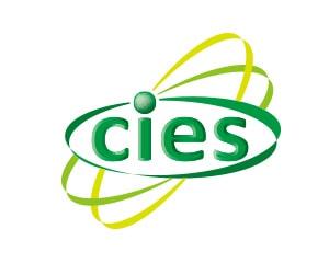 東北大学国際集積エレクトロニクス研究開発センターロゴイメージ